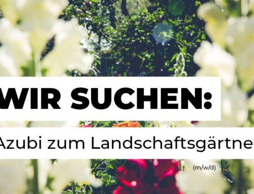 Azubi zum Landschaftsgärtner (w/m/d) gesucht