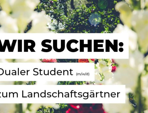 Dualer Student (m/w/d) zum Landschaftsgärtner gesucht
